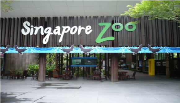 Singapore Zoological Garden